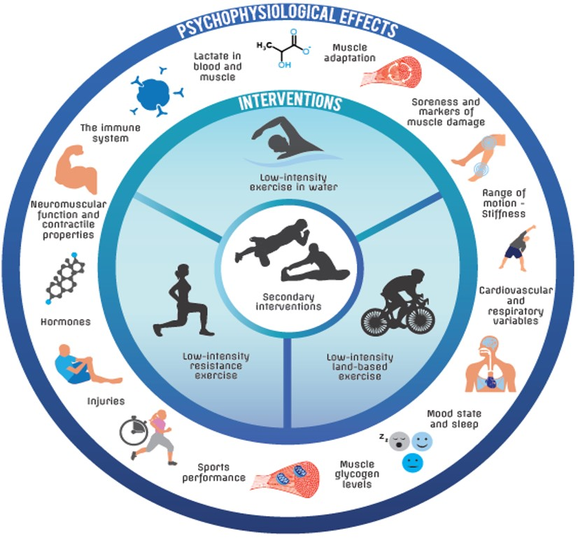 Cool-down figure showing the potential psychphysiolgial benefits of an active cool-down or warm-down on post-exercise recovery. Potential benefits include lactate removal, muscle soreness reduction, improved performance and prevention of injuries