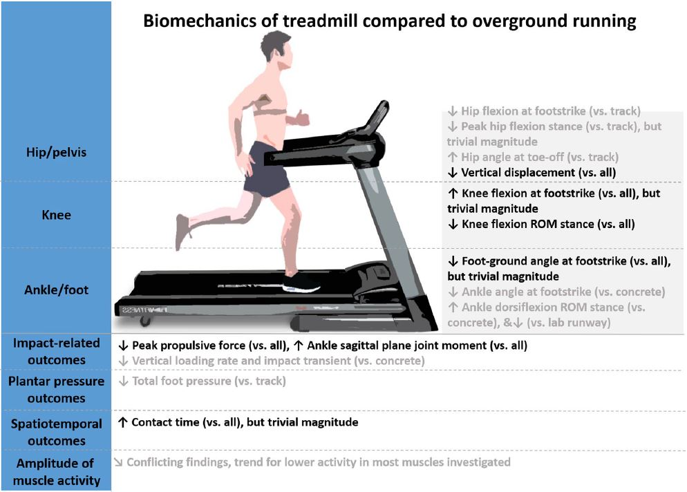 Biomechanical differences between treadmill and outdoor running